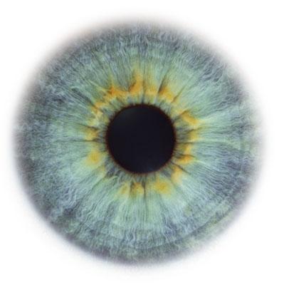 Eye Scapes - 14.jpg